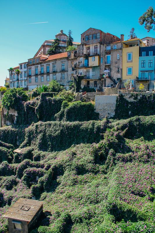 porto - portugalia_-4