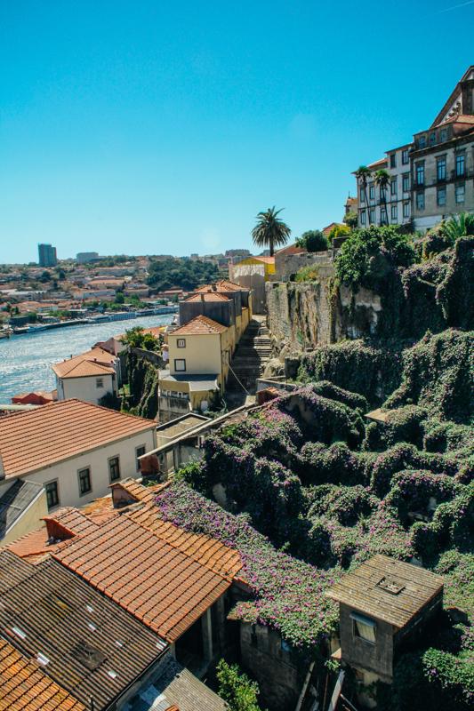 porto - portugalia_-5
